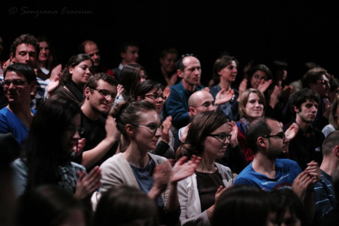 Intermediere culturală / Dezvoltarea Publicului